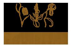 floraplus.pl - Świat roślin od podszewki Logo